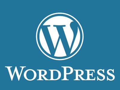Создание сайта при помощи CMS WordPress